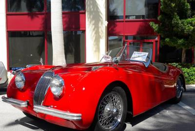 Miami Exotic and Classic Car Show