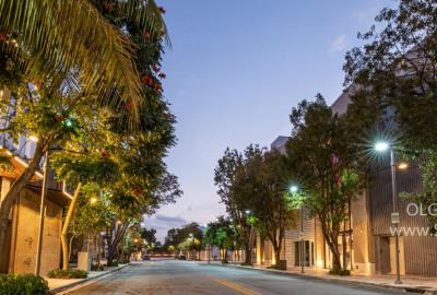 Deserted streets of Design District Miami during quarantine, Photographer Olga Kulakova